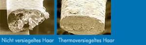 mikroskop bilder von Querschnitt der haare, ohne heise schere ( foto links ) und mit heise sche schnitt ( fotos Rechts )